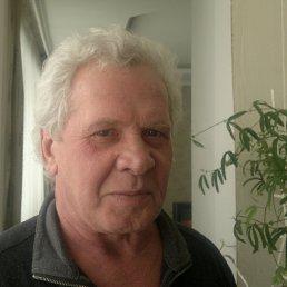 Николай, 61 год, Курск