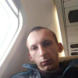 Николай, 29 лет, Борисполь