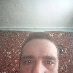 Денис, 28 лет, Воронеж