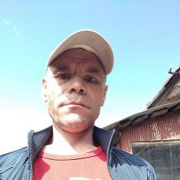 Лев, 44 года, Воткинск