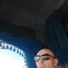 Виктор, 32 года, Мелитополь