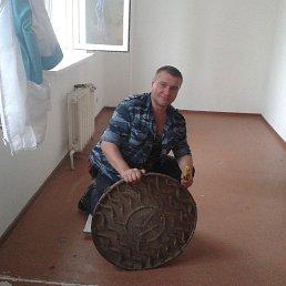 Феофан, , Воронеж