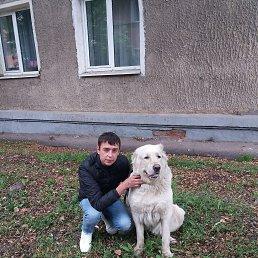 Дима, 28 лет, Ярославль