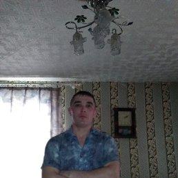Ильдар, 32 года, Димитровград