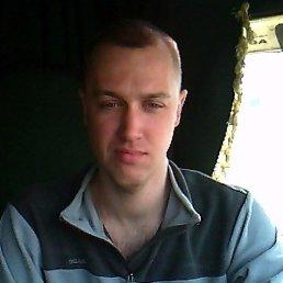 Евгений, 32 года, Грязи