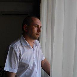 Алексей, 35 лет, Краснодар