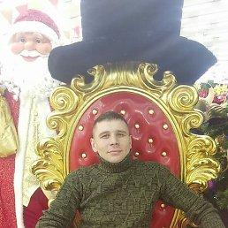 Serega, 33 года, Хотьково