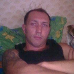 Алексей, 38 лет, Южное