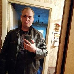 Андрей, 20 лет, Вологда