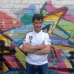 Александр, 46 лет, Калининград
