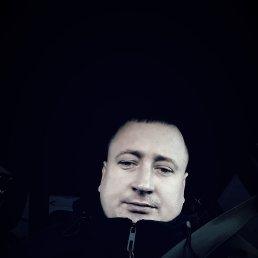Дима, 28 лет, Кокшетау
