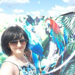 Светлана, 49 лет, Полтава