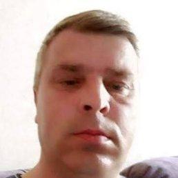 Сергей, 52 года, Коломна