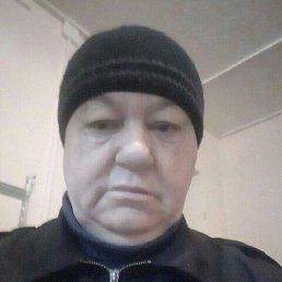 Анатолий, 63 года, Воронеж