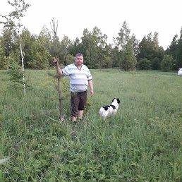 Сергей, Новокузнецк, 52 года