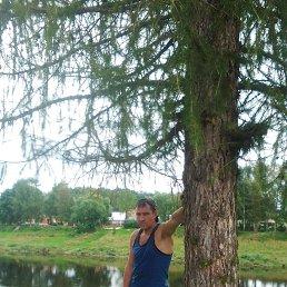 Андрей, 43 года, Ржев
