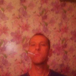 Александр, 35 лет, Томск