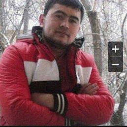 Нурик, 28 лет, Дмитров