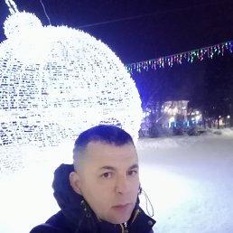 Миша, 36 лет, Томск