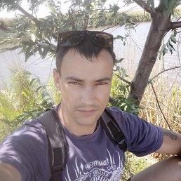 Денис, 28 лет, Батайск