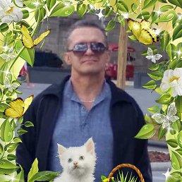 Вячеслав, 57 лет, Зарайск
