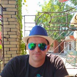 Роман, 29 лет, Киев