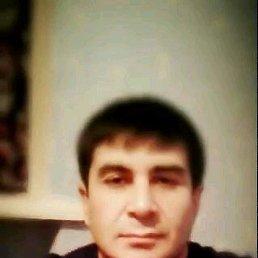 Бек, 41 год, Видное