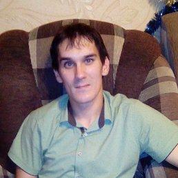Антон, 33 года, Ярославль