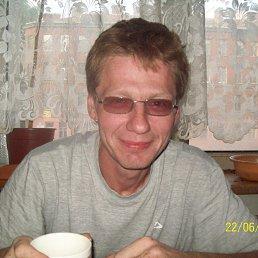 Дима, 43 года, Сертолово