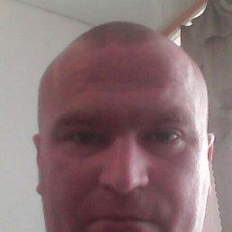 Михаил, 30 лет, Курск