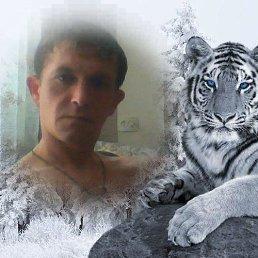 Aleksey, 34 года, Новосибирск