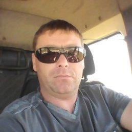 Павел, Курск, 39 лет