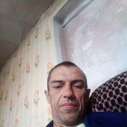 Иван, 38 лет, Курган