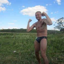 Павел, 53 года, Александров