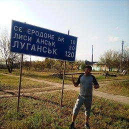 Дмитрий, 31 год, Черкассы