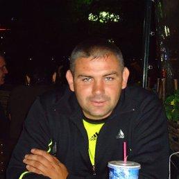 Вова, 40 лет, Борисовка