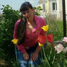 Светлана, 50 лет, Кировоград