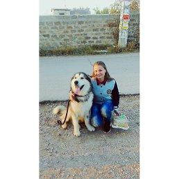 Алина, 20 лет, Симферополь