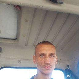 Серёга, 33 года, Суворов