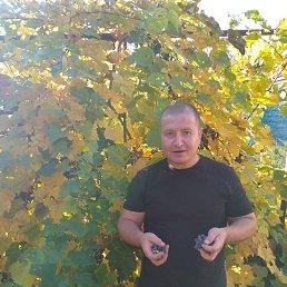 Алексей, 42 года, Тверь