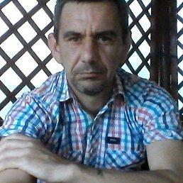 Роман, 45 лет, Самбор