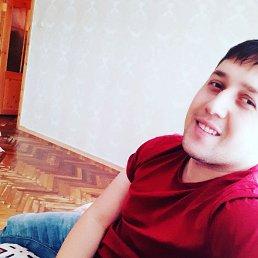 Сева, 27 лет, Приозерск