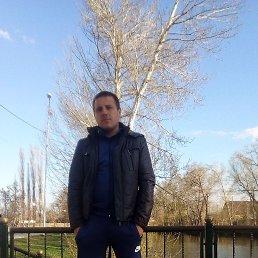 Денис, 30 лет, Воронеж