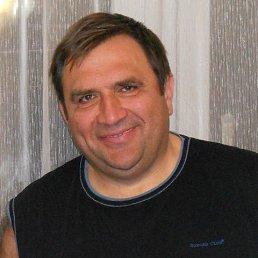 Николай, 56 лет, Воронеж
