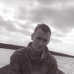 Кирилл, 32 года, Тула