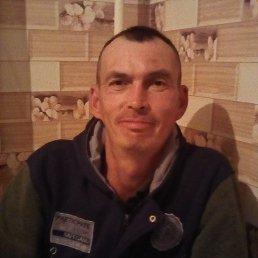 Андрей, 44 года, Димитровград