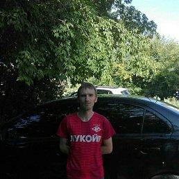 Анатолий, 32 года, Тула