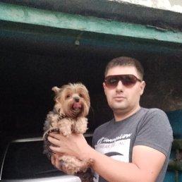 Дмитрий, 34 года, Ровеньки