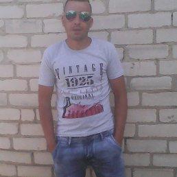 Алексей, 29 лет, Киев