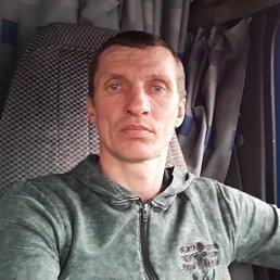 Александр, 48 лет, Донской